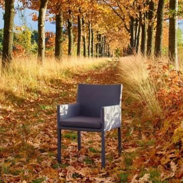 Antas Chair x 2
